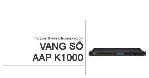 Vang số AAP K1000